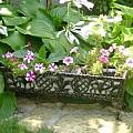 Suport flori SF05